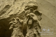 Zand Diep (51)